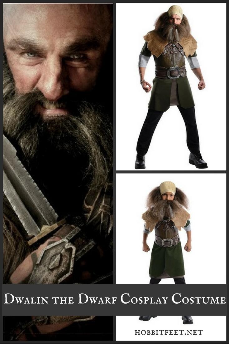 Dwalin the Dwarf Cosplay Costume